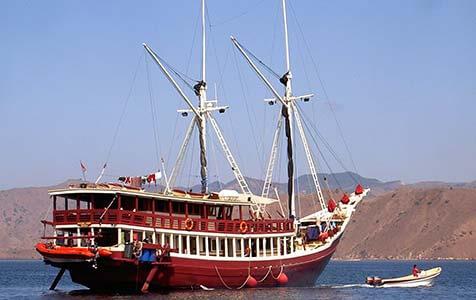 Seven Seas Custom 1