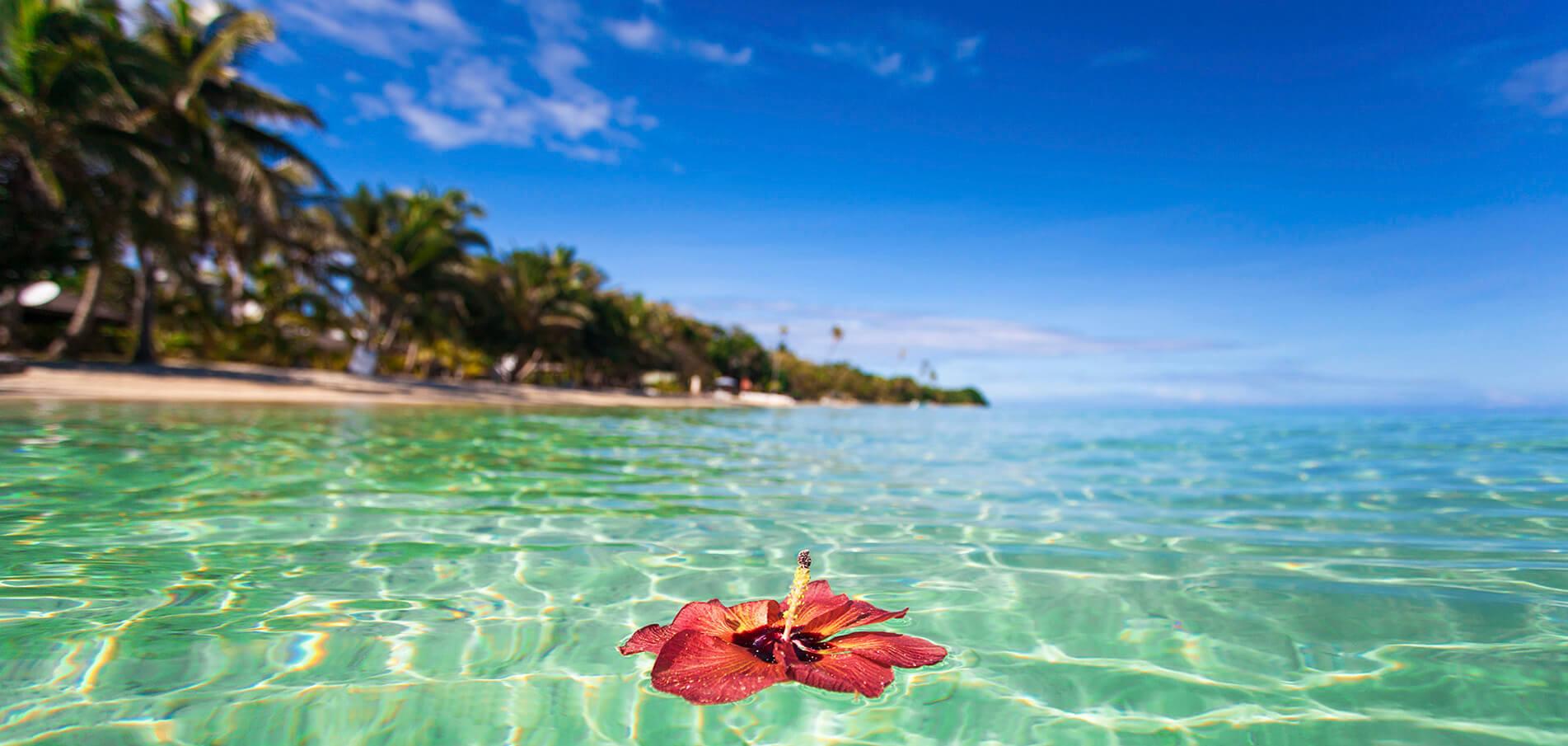 Charter di Superyacht Figi